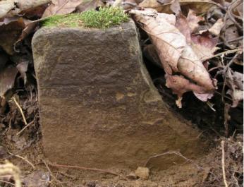 gus wiggins grave